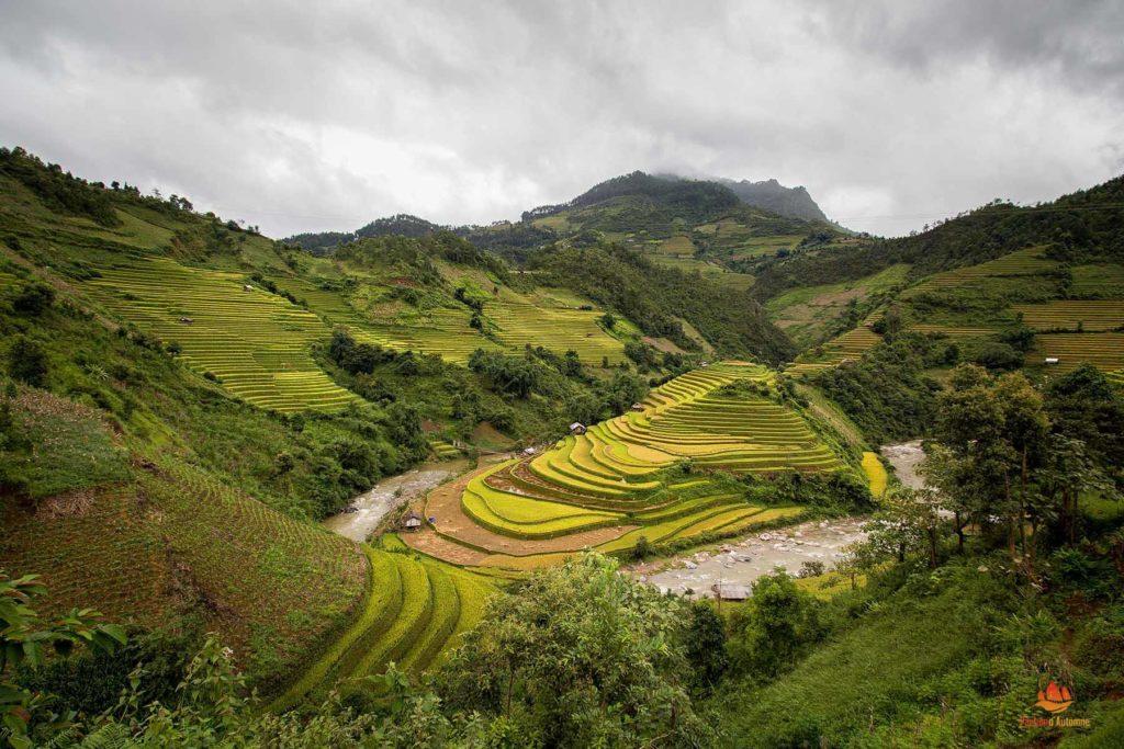 Rizières en terrasse de Mu Cang Chai, Vietnam