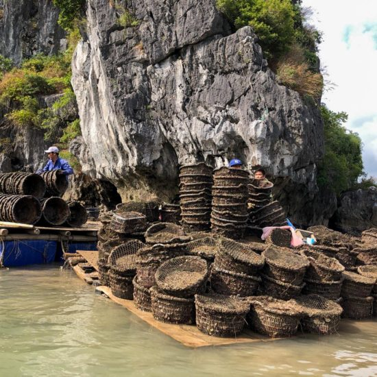 Pêche de coquillage dans la Baie de Lan Ha, Baie d'Halong, Vietnam