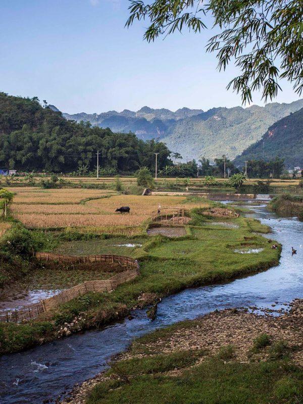 Paysage de Mai Chau, Vietnam