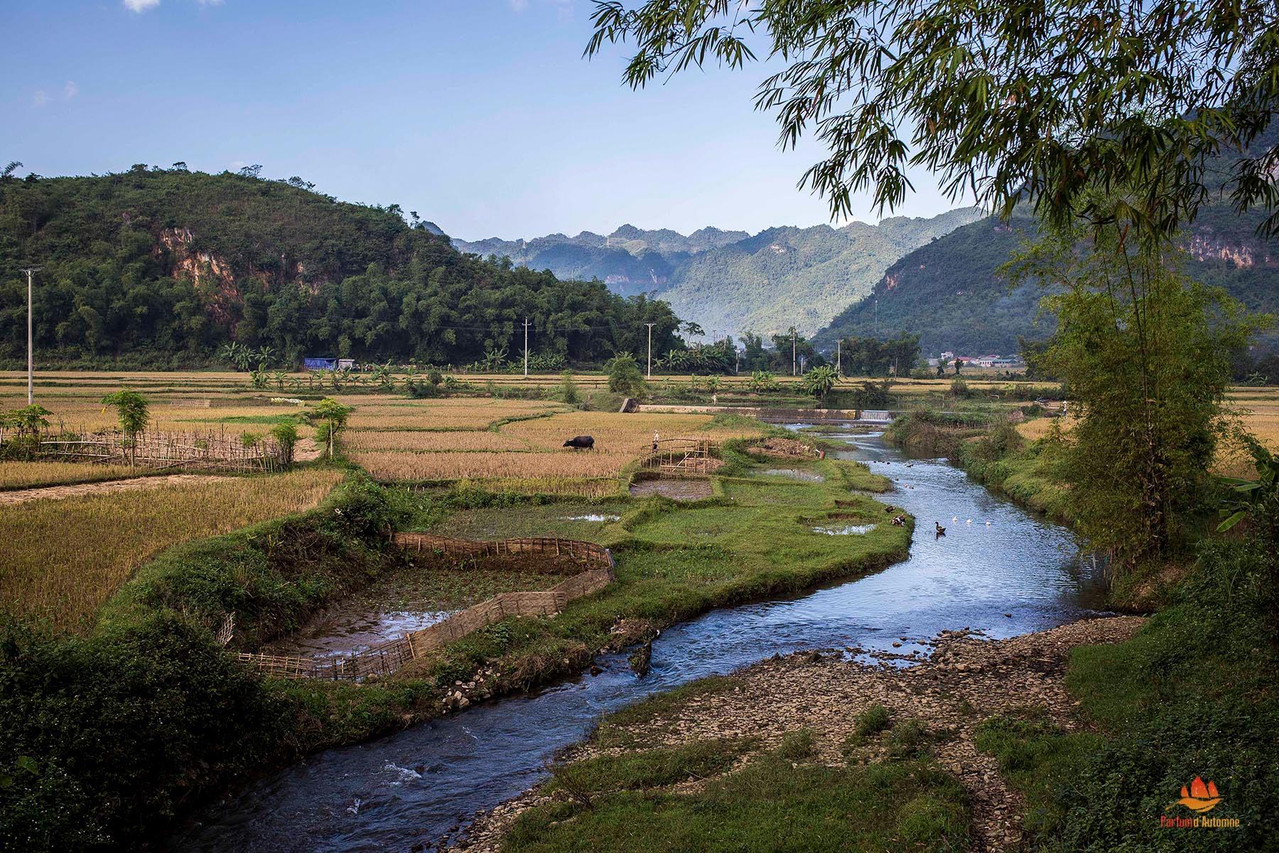 automne rivière datant rencontres en ligne urbaines