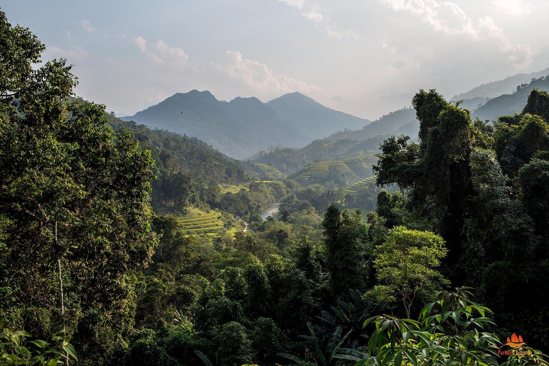 Paysage montagneux de Hoang Su Phi, Province de Ha Giang, Vietnam